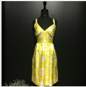 NEW BANANA REPUBLIC SILK Fully Lined Dress(Sz 12